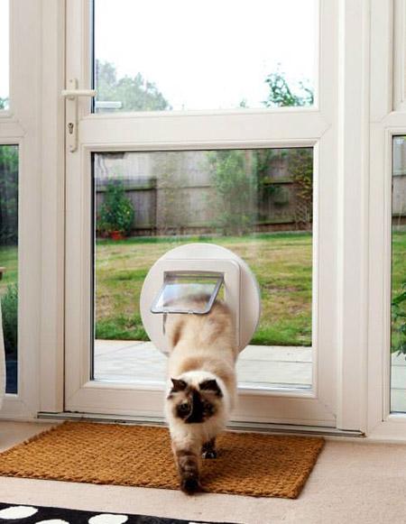 Cat Flaps For Upvc Doors Microchip